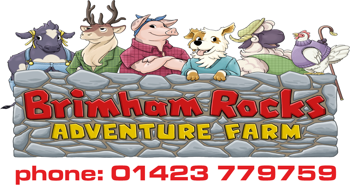 Brimham Rocks Adventure Farm